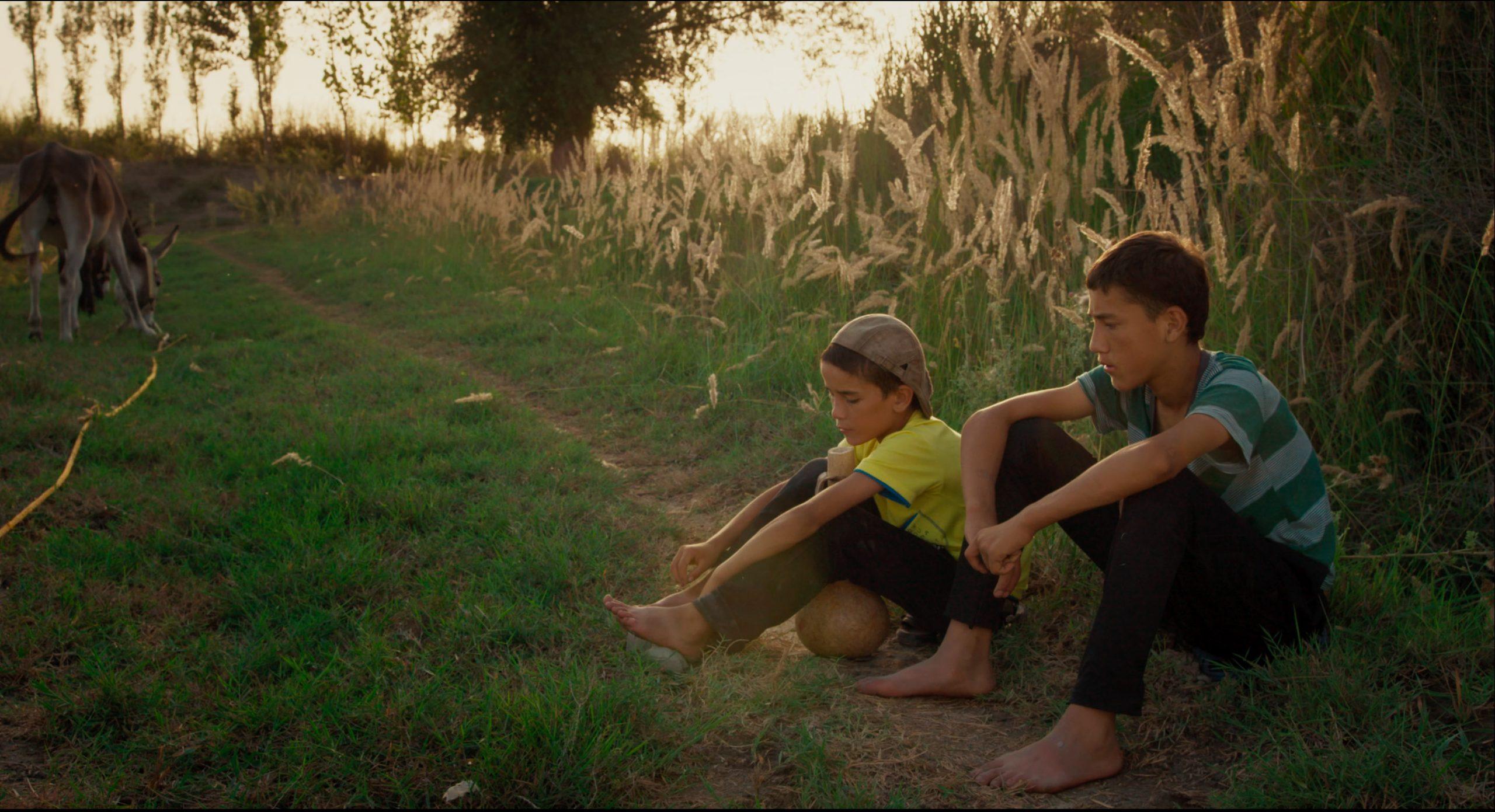 Source: Beijing Medoc Film